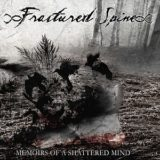 Fractured Spine – Memoirs of a Shattered Mind