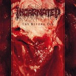 Incarnated – Try Before Die