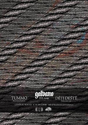 Galvano poster 2014