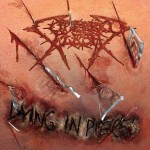 Cutterred Flesh - Dying in Pieces