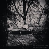 Capa - This Is the Dead Land This Is Cactus Land