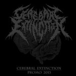 Cerebral Extinction - Promo 2013