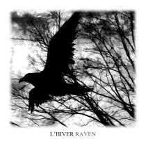L'hiver - Raven