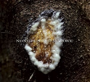 Non Opus Dei / Morowe - Dziwki dwie