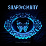 Shape My Clarity – Chameleon Mirror