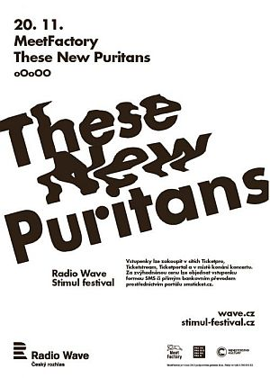 These New Puritans poster 2013