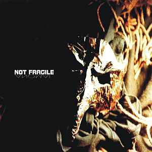 Not Fragile - Anomal