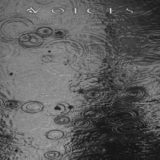 Voices – From the Human Forest Create a Fugue of Imaginary Rain