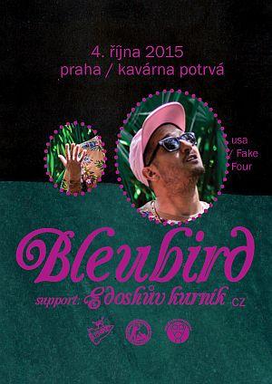 Bleubird poster 2015