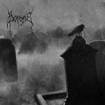 Borgne – Royaume des ombres