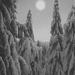 Devilgroth – Landschaft