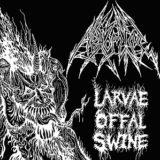 Abhomine – Larvae Offal Swine