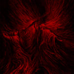 Death Fetishist – Clandestine Sacrament