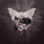 Celestial Grave – Pvtrefactio