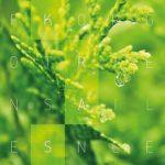 Forgotten Silence: ukázka z chystaného alba