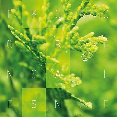 Forgotten Silence - Kras