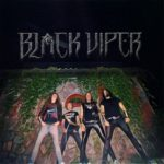 Black Viper: debut