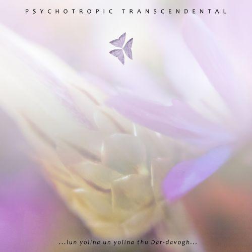 Psychotropic Transcendental - …lun yolina un yolina thu Dar-davogh…