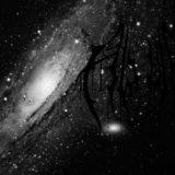 Aludra – Mass Stellar Graves