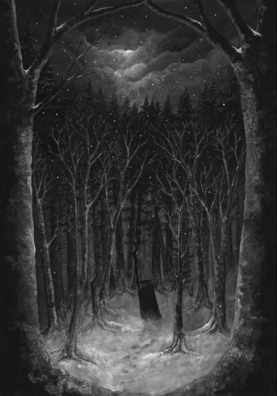 Paysage d'hiver - Im Wald