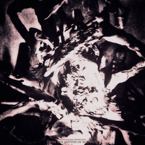 V/A - From the Depths of Madness